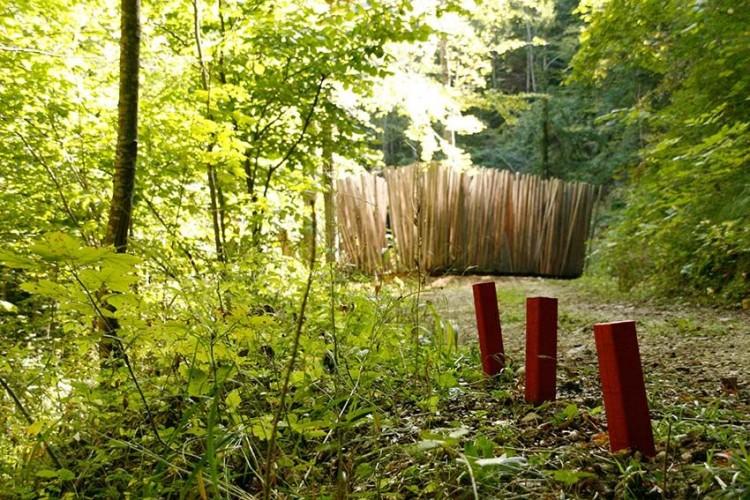 Holzweg Thal, der Erlebnisweg