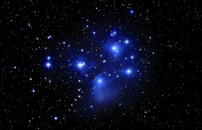 Schlafen unter 1000 Sternen PARKFÜCHSE