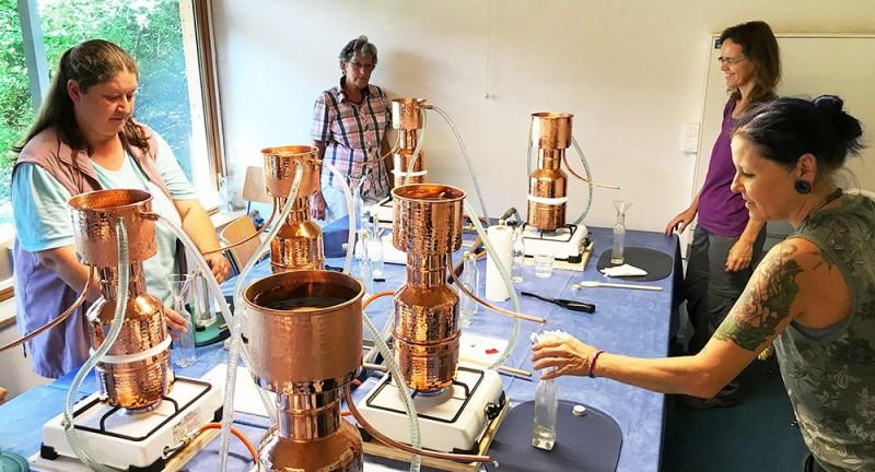 Duftessenzen selbst destillieren – Basiskurs 1