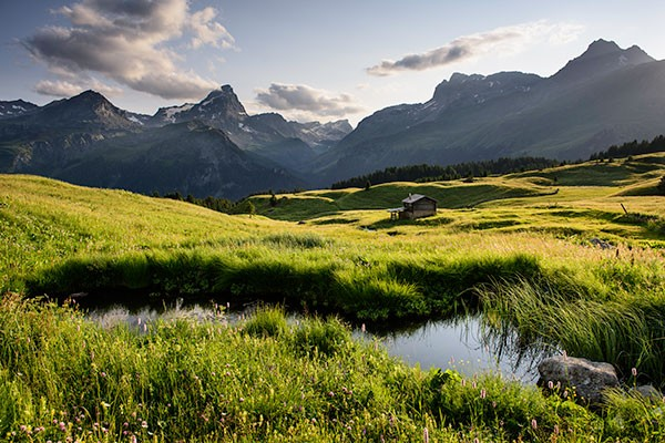Natureinsatz Steinwall AlpFlix - © lorenzfischer.photo