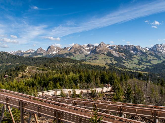 Natura Trail Gantrisch - 1 - © René Michel