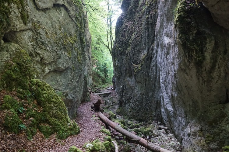 Weissenstein – Passwang Weg