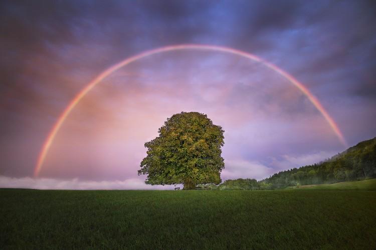 © Copyright by Michel Jaussi, www.jaussi.com