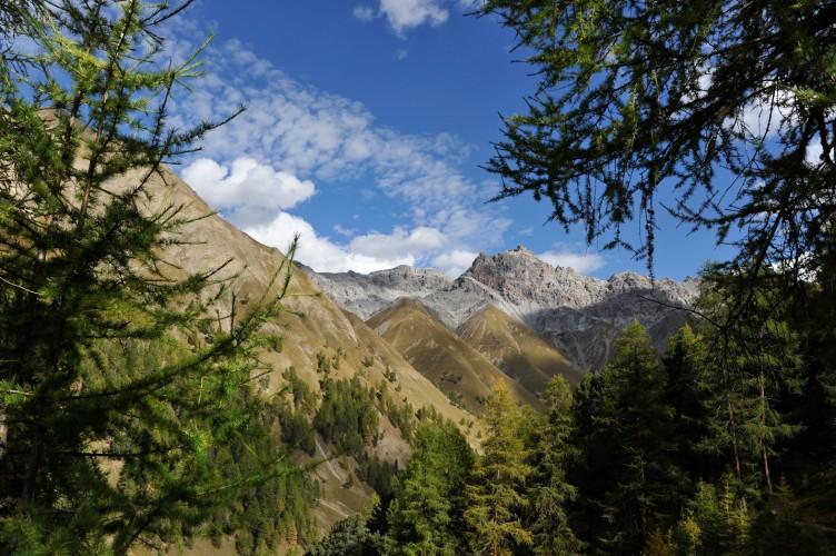 01 Alp Trupchun