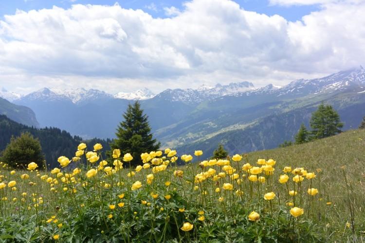 Walserweg Graubünden Etappe 7