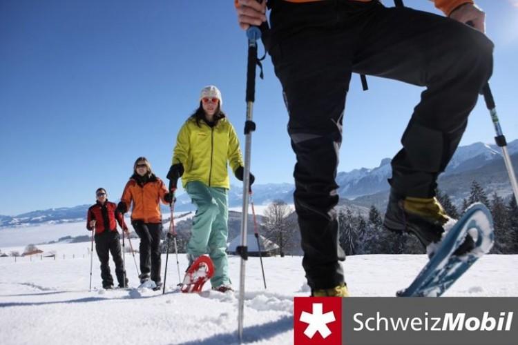 Schwyberg Trail