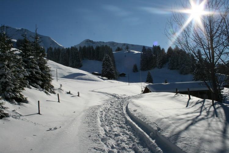 Winterwanderweg Springboden
