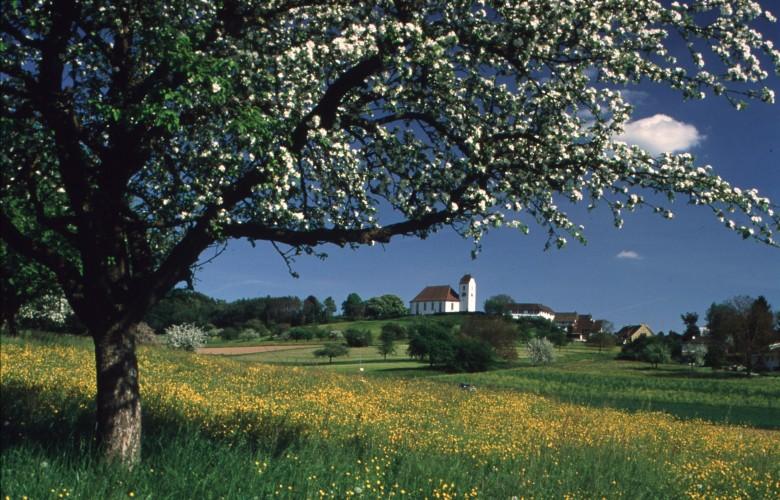 La route de Klettgau à vélo
