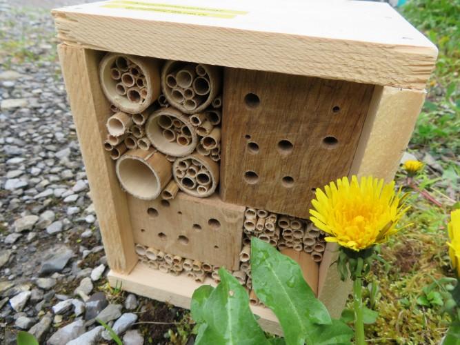 Erlebnis-Samstag Wildbienen-Nisthilfe