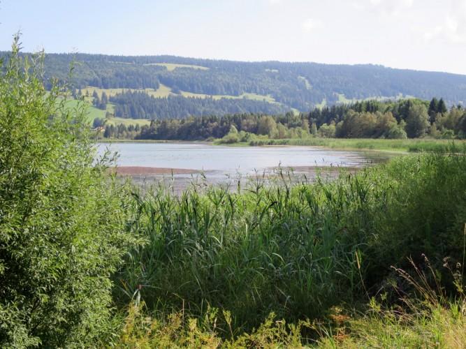 Rund um den Lac de Joux