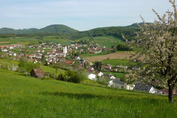 Picknick 'Rund um Herznach'