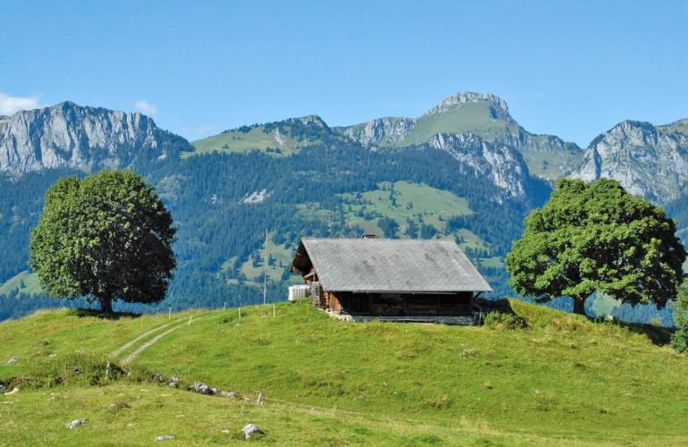 Alpage de Tschuggen