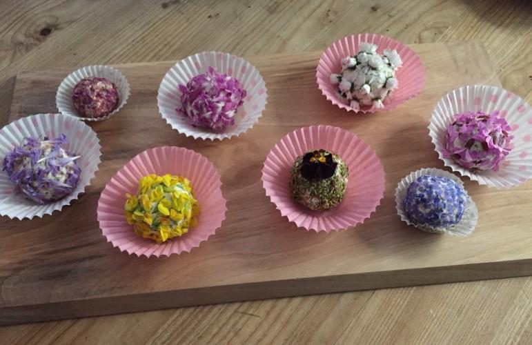 Wilde Kräuterküche – Gefundenes Essen