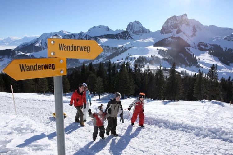 Selibüel-Winterwanderung