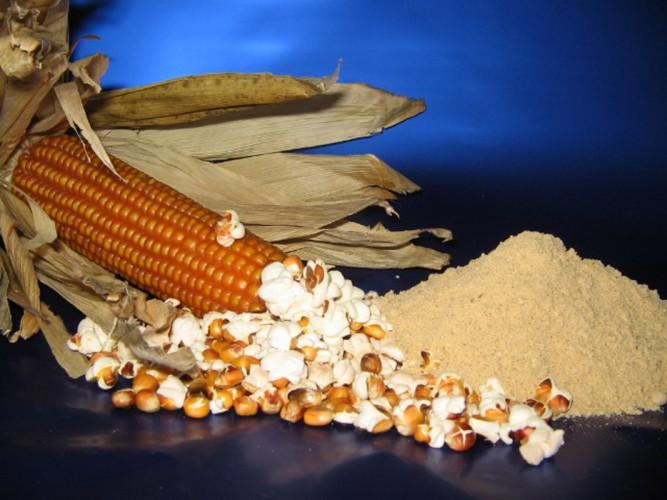 Minestre alla farina bona