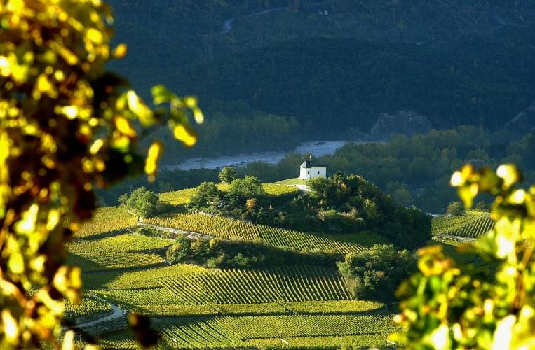 Weinweg: Sierre - Salgesch