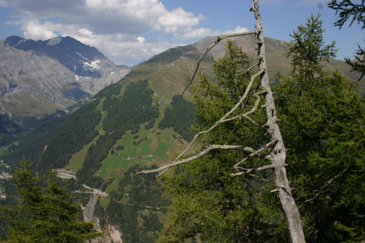 Randonnée Albinen-Leukerbad