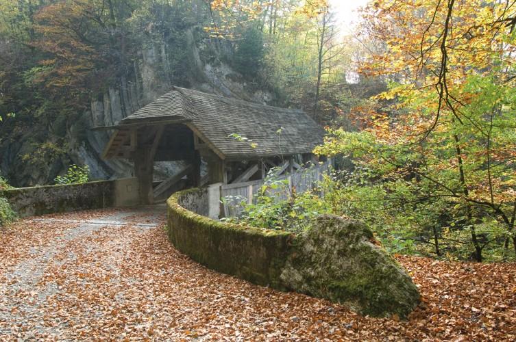Les ponts de la Gruyère