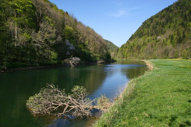 Chemin au fil du Doubs 2