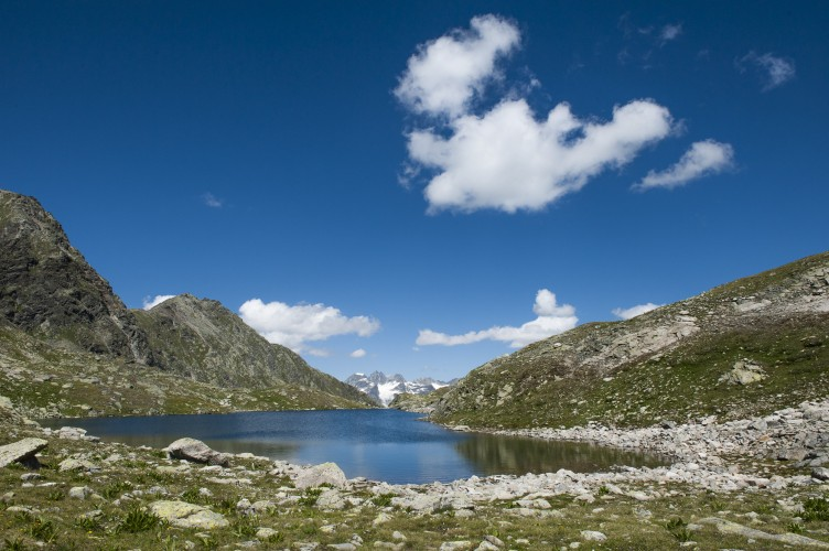 Geführte Exkursion Macun - © ©Schweizerischer Nationalpark/Hans Lozza