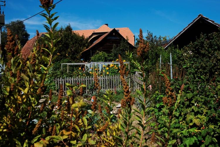 Biohof Obereichi