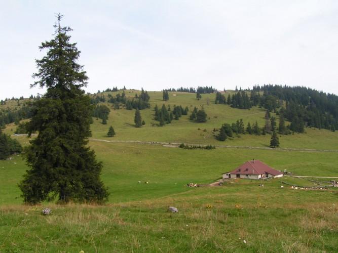 Col du Mollendruz - Montricher