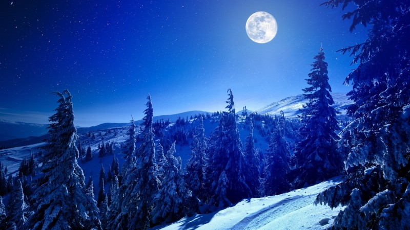 Vollmond Skifahren mit Fondue im Selital