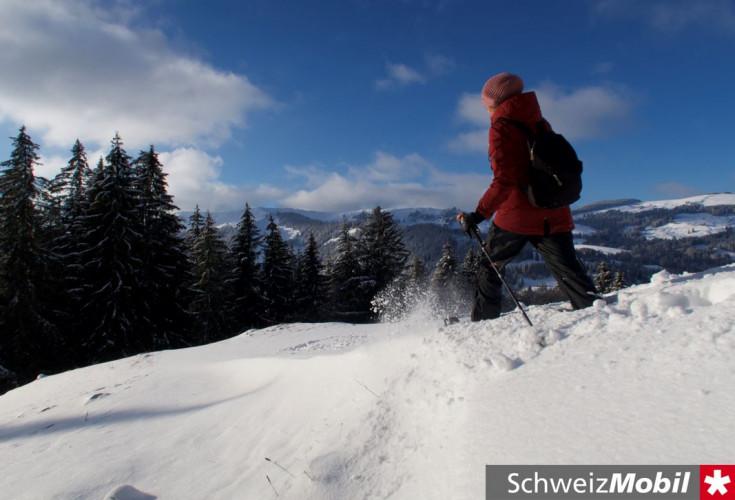 Aettenberg Trail (284) - © René Michel