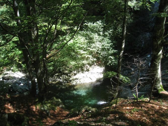 Réserve forestière Palagnedra