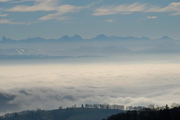 Vogelbergfluh (1204 m)
