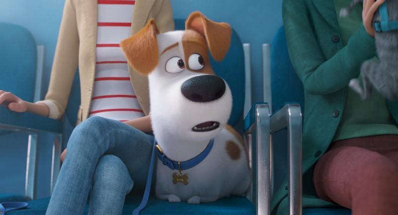 Kino: Pets 2