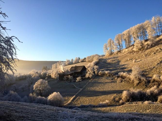 Bergwirtschaft Rinderweid