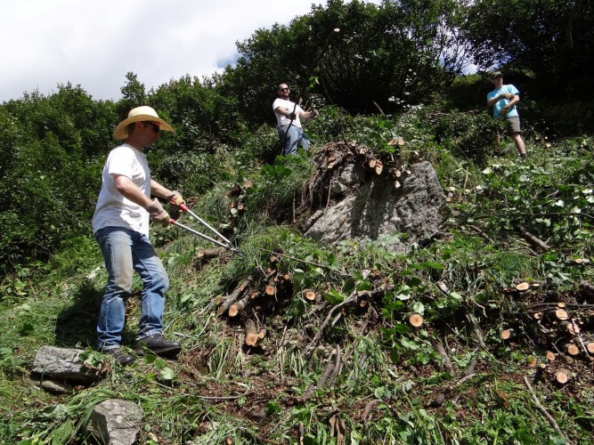 Freiwilligenarbeit