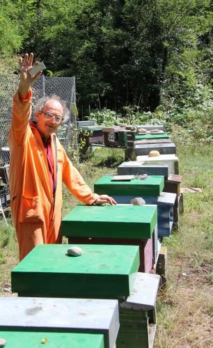 Passeggiando tra api e miele