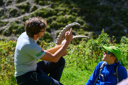 Excursions pédagogiques au Parc National Suisse