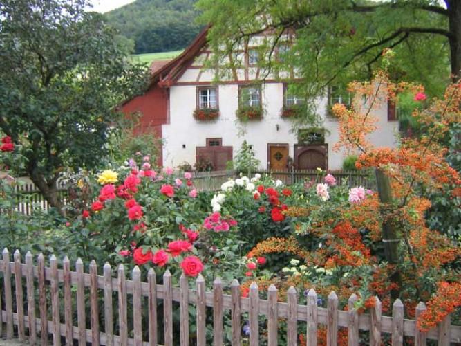 Tour des jardins d'Osterfingen