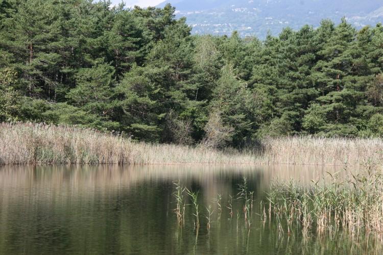La nature, notre mère 1H - 2H