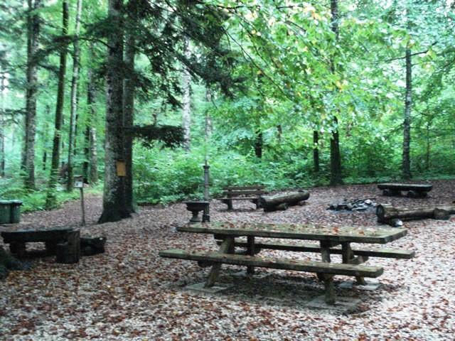 Bois de la Rosière, Gimel