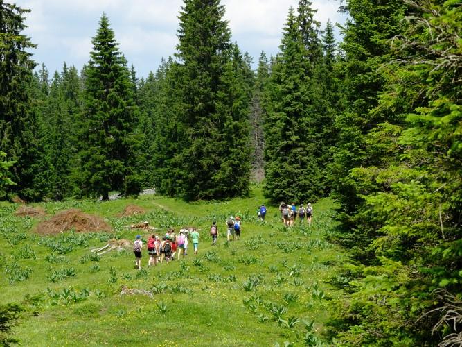 Col du Marchairuz - Le Brassus