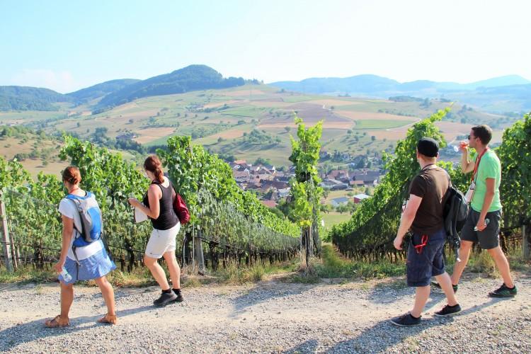 Jurapark-Weinwanderung 2019