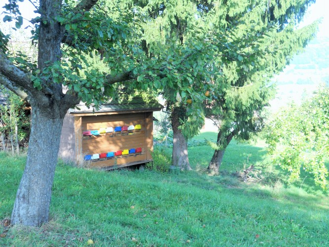 Ferme apicole Höhener