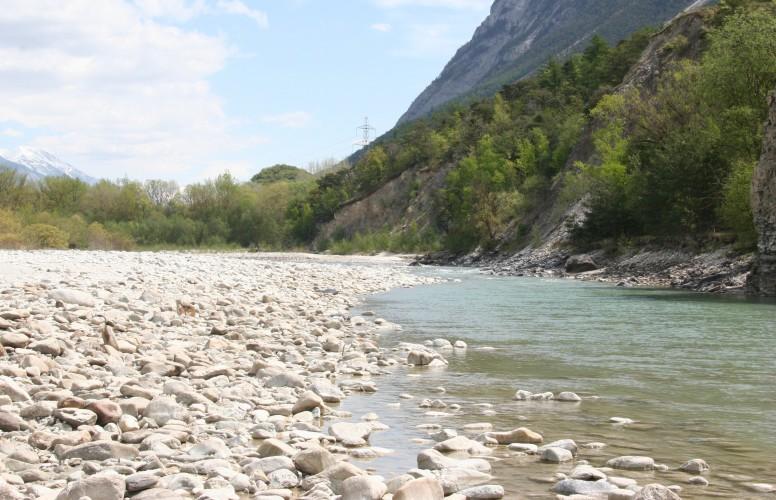 Le Rhône sauvage