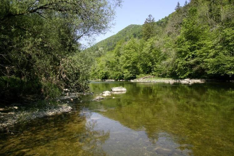 Chemin au fil du Doubs 3