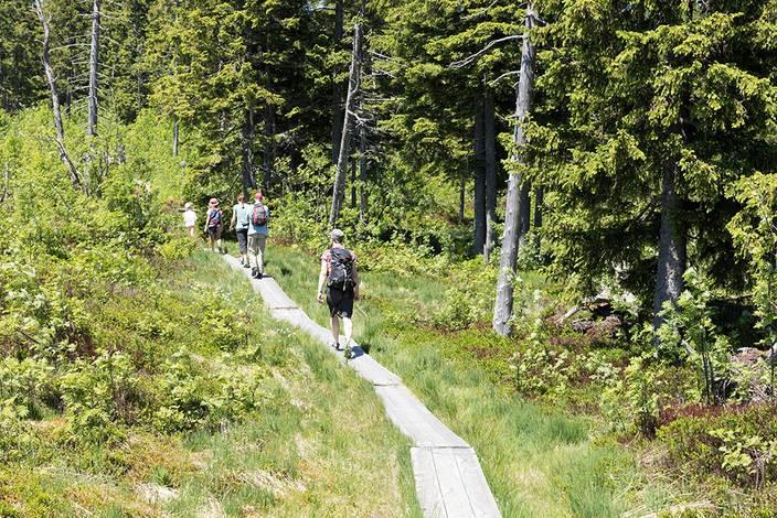 Natura Trail Gantrisch - 2