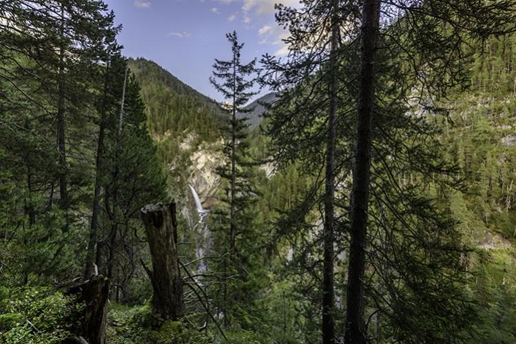 Wasserfall Bärentritt, Wiesen