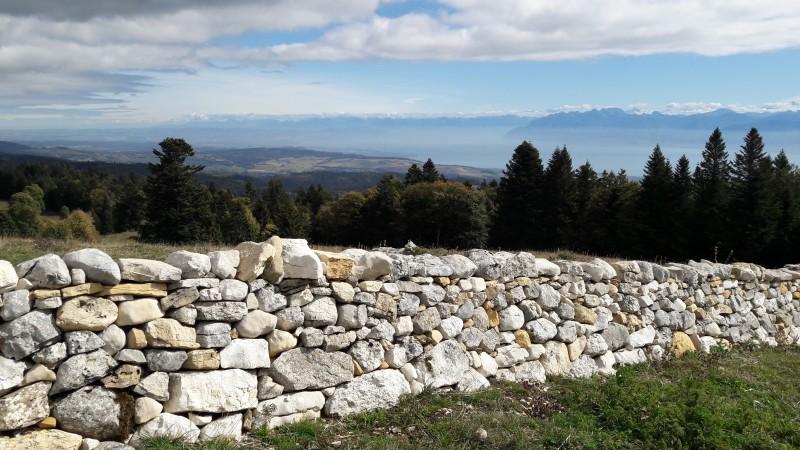 Parc Jura vaudois