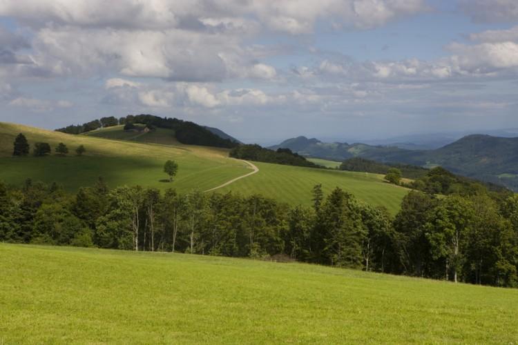 Brunnersbergkette (1118m ü.M.)