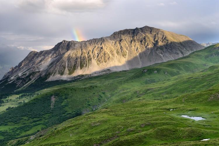 Alp da Stierva