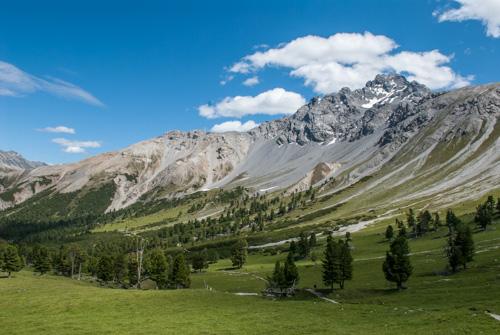 19 Val Mingèr - GESCHLOSSEN - © ©Schweizerischer Nationalpark/Hans Lozza