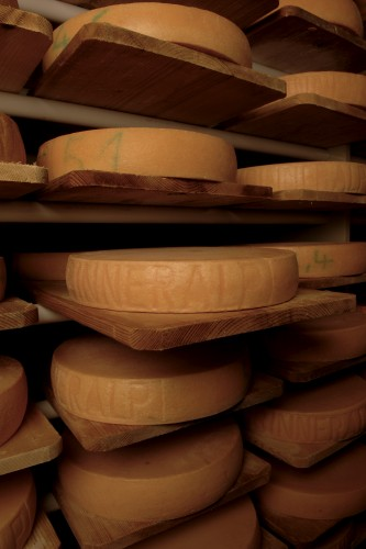 Binn Alpine cheese dairy